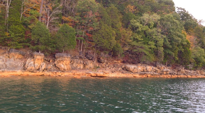 Fall at Norris Lake